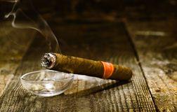 Charuto cubano luxuoso ardente Imagem de Stock