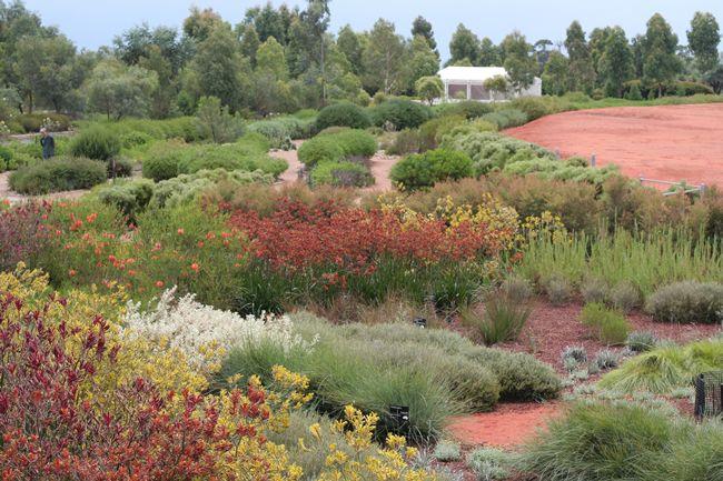 australia u0026 39 s best gardens