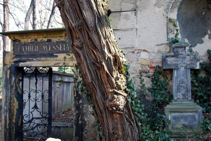 Olsany historic cemetery in Zizkov quarter, Prague