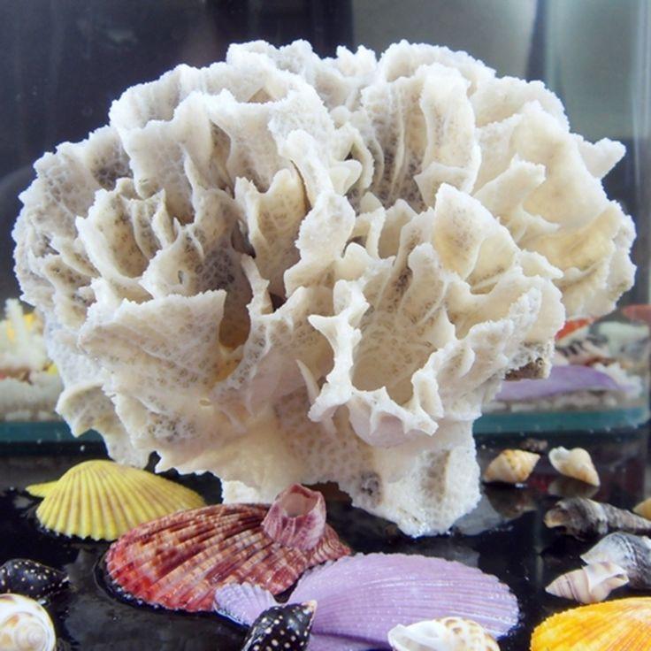 Новые ожидаемые природный серый пион коралловые для аквариума украшения пейзаж природный раковин платформы установка дома-деко