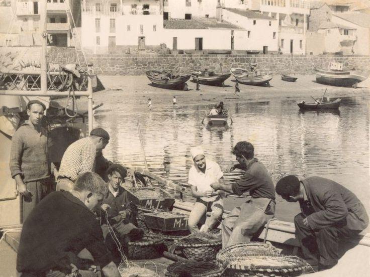 porto e mariños