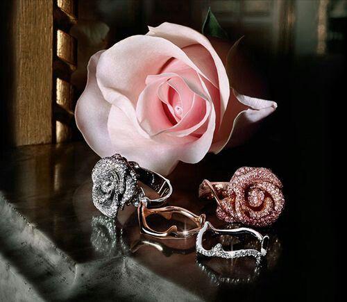 Ring rose flower