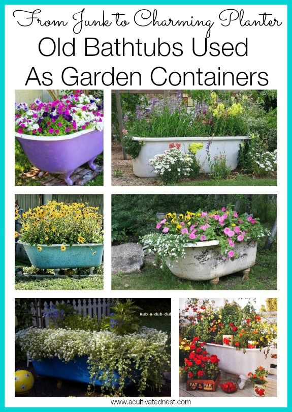 Start planning your garden for next year! Here's how to use an old bathtub as a charming container in your garden. Lots of great ideas!