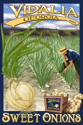 Vidalia, Georgia - Onion Field - Lantern Press Poster neste link: http://www.emanuelnetwork.com/enmoneypt