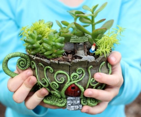 ... Fairy Garden on Pinterest | Miniature fairy gardens, Fairy garden
