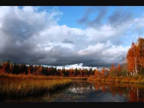 Jarkko Honkanen - Onko sylis vielä lämpöinen