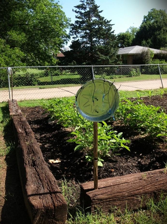Cheap easy animal control for your garden keep out the - How to keep animals out of your garden ...