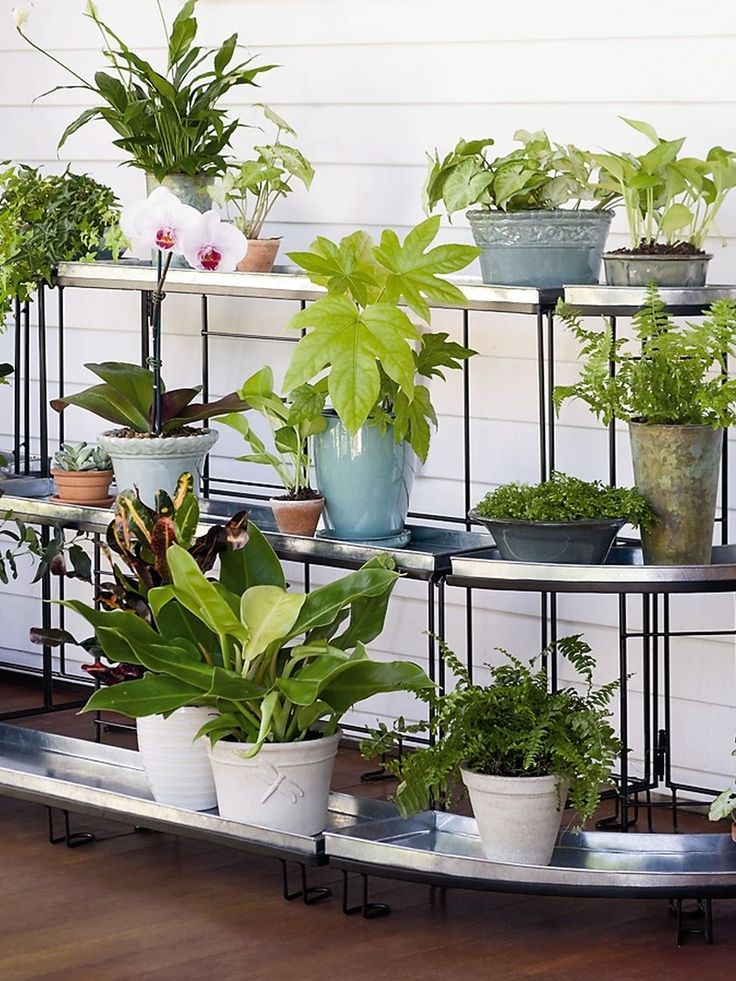 Plus de 1000 idées à propos de Gardening in containers sur Pinterest