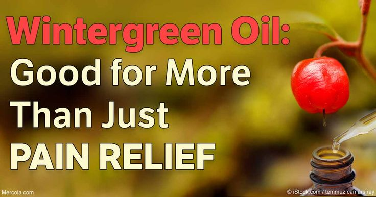 Wintergreen oil is commonly associated with pain relief, but the benefits and uses of this herbal oil are more far-reaching – discover more in this article. http://articles.mercola.com/sites/articles/archive/2016/11/03/wintergreen-oil.aspx
