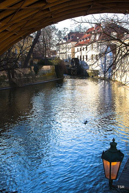 Vienna to Prague is the trip to be on this summer! http://www.austinlehman.com/tours/vienna-to-prague-austria-czech-republic-tour-trips-63.php