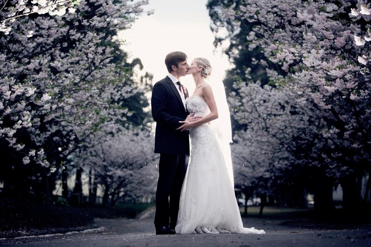 This picture was sent to us by Taryn & Rob. Taryn looked gorgeous in her Olivelli gown! pinned with Pinvolve