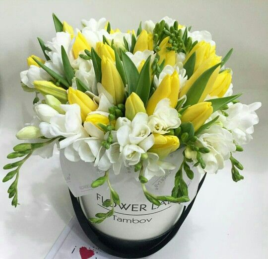 Tulipes Jaunes et Freesia blancs <3