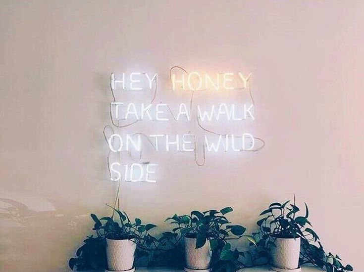 Honey take a walk on the wild side