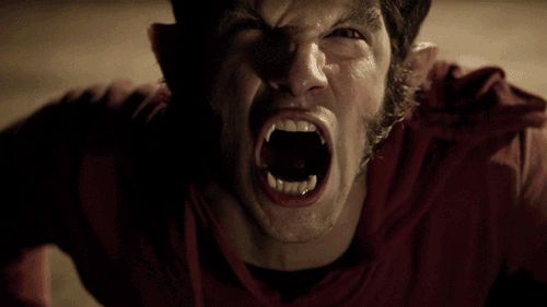 25 dolog, amit nem tudtál a Teen Wolfról - Starity.hu