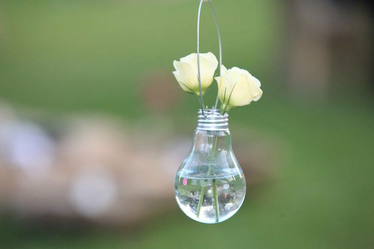 lampadina pendant portafiori