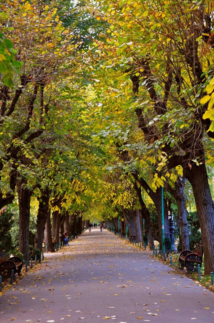 Bucharest Cismigiu Park   ©Epoque Hotel Bucharest