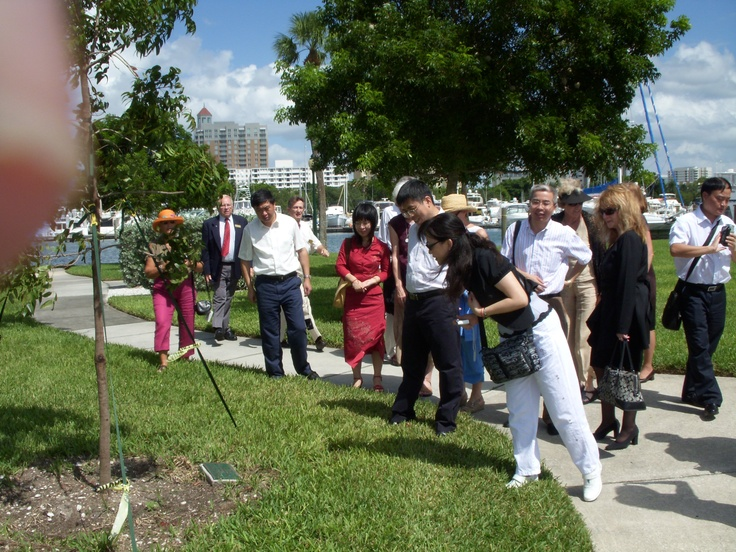 Xiamen, China delegation at the Sister City Walk on the Sarasota Bayfront where a tree has been planted to signify the formal twinning of Sarasota and Xiamen during events in Sarasota in October 2007 to finalize the establishment of a Sister City relationship between Sarasota and Xiamen