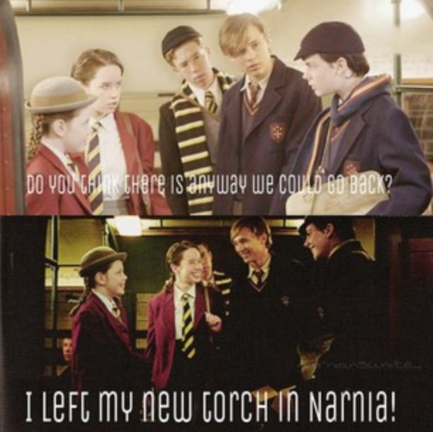 """I left my new torch in Narnia!""- Edmund Pevensie. Probably one of my most favorite lines in Prince Caspian."