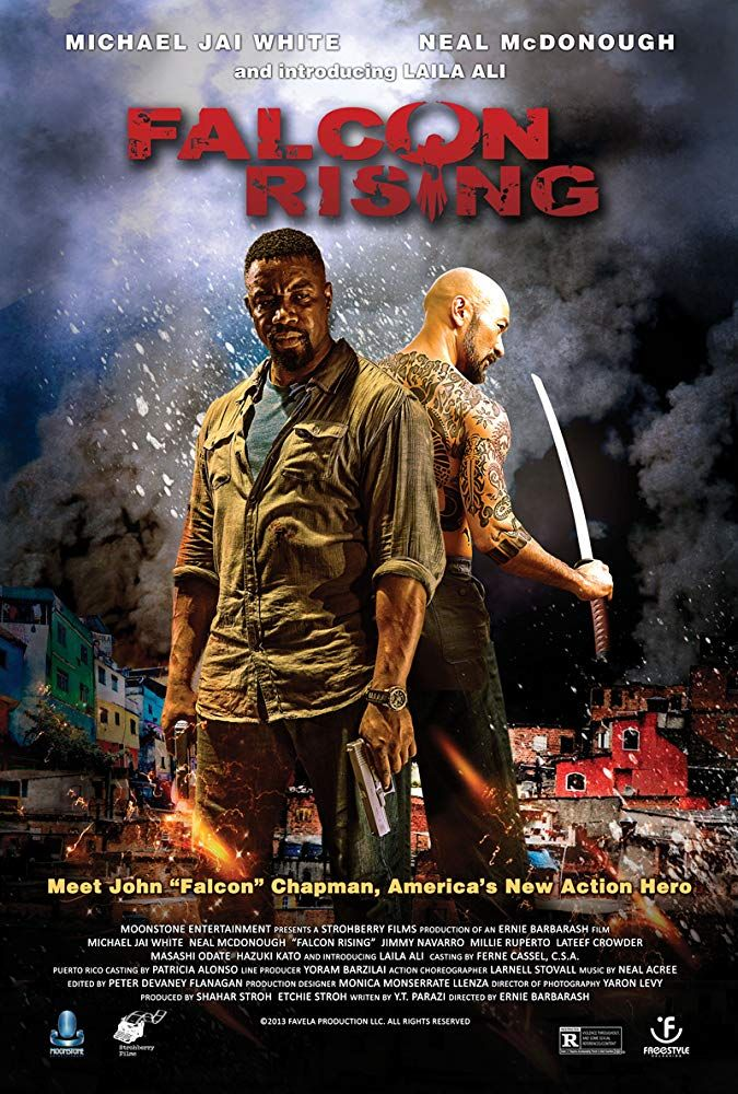 Falcon Rising Michael Jai White Best Action Movies Free Movies Online