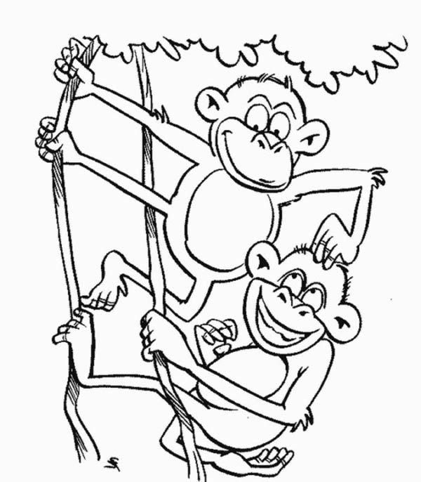 Monkey Monkey Brothers Play On A Tree Coloring Page Jpg