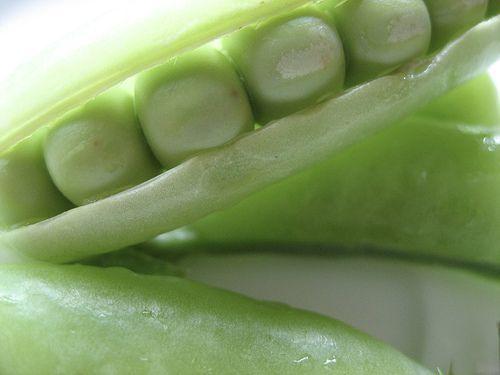 Les légumes secs sont des aliments très nutritifs et économiques qui nous apportent une grande quantité de protéines, de fibres et de vitamines.