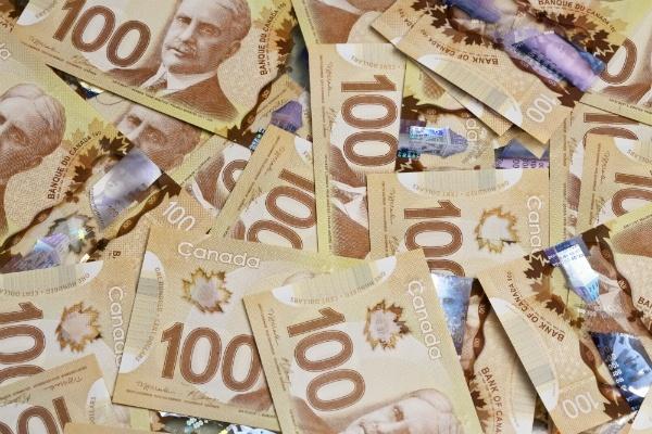 Lovely plastic money!