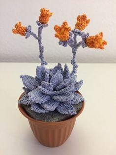 24 best fiori ad uncinetto images on pinterest crocheted for Il blog di sam piante grasse