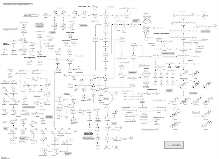 Biochemistry Lecture Notes & Study Materials ...
