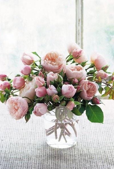 : Beautiful Flower, Pink Flower, Flower Arrangements, Fresh Flower, Gardens Rose, Pink Rose, English Rose, David Austin Rose, Pink Peonies