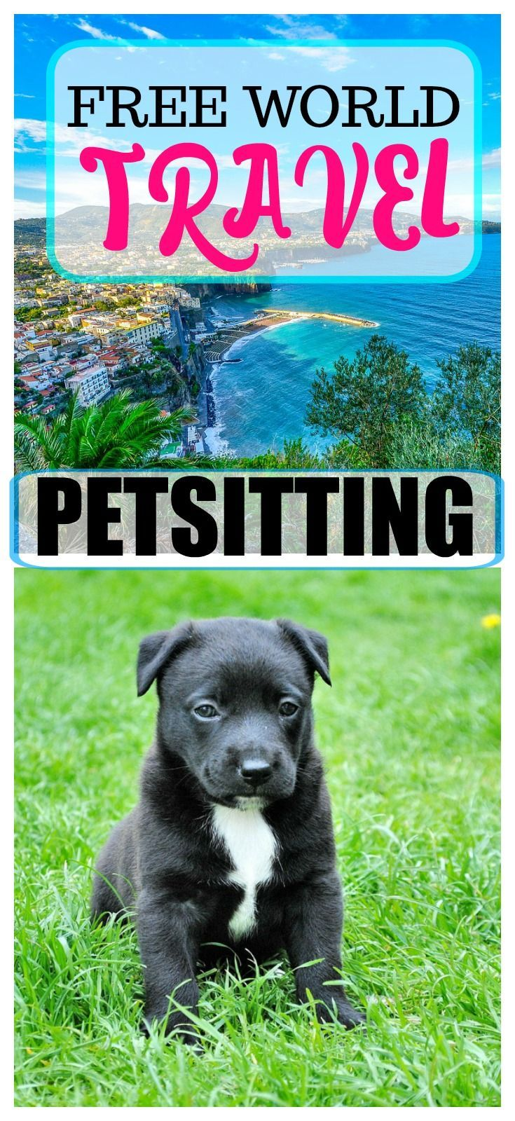 If you love dogs and cats, you can travel on a budget by petsitting! Stay in someone's home for free and watch their animals. There are homes all over the world, which is awesome.