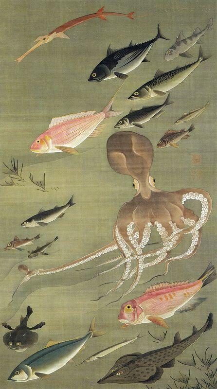 """伊藤若冲 Ito Jakuchu/27 群魚図《蛸》 Gungyo-zu""""Tako""""(Fish-Octopus)"""