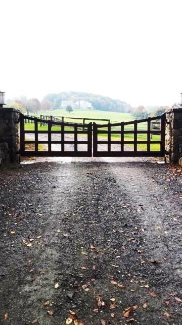 Automated Iron entrance Gate. Learn more at gatesandfences.com