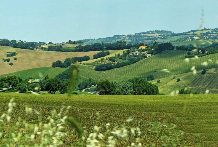 Ancona, Marche, Italy - Colline Marchigiane by Gianni Del Bufalo CC BY-NC-SAimg_7988-91 stitch - Marche Hills
