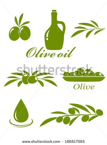 set of green olive design elements on white background