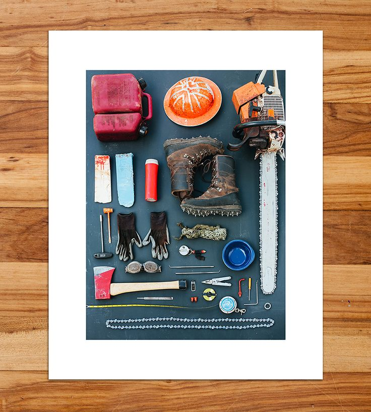 Lumberjack Tools Taxonomy Photo Print | Add this tidy taxonomy snapshot to your mix of wall art for a ... | Posters