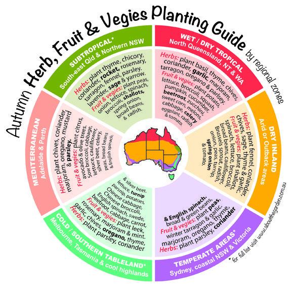 Autumn herb fruit vegies planting guide by regional for Gardening zones australia