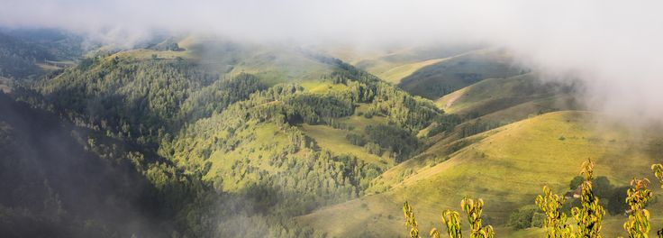 The Raven's Nest is the perfect starting point of your Transylvanian adventure. #transylvania #rurallife #Romania #wildlife #authenticlife #rural