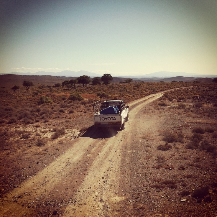 Karoo just love this place