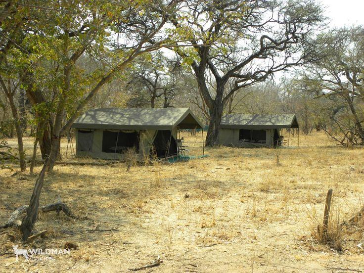 Hwange Mobile Camp, Zimbabwe. A mobile safari camp in a private, Hwange concession, offering wonderful wildlife and birding safari activities away from major tourist routes. #hwange #zimbabwe #travel #africa #africansafari