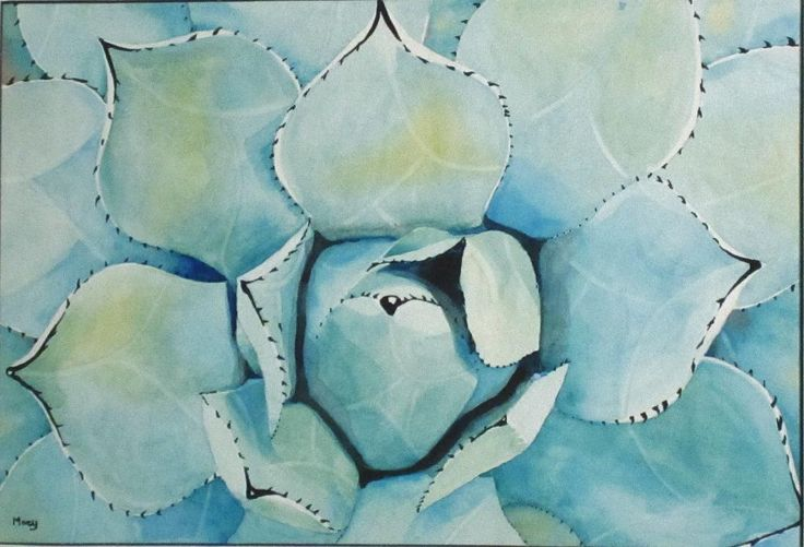 Succulent, A3, Watercolour, Dec 2015, by Moey (NFS) No.13