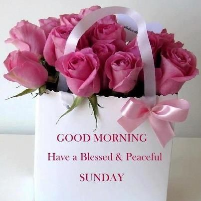 Good morning Have a Blessed Sunday quotes quote days of the week sunday sunday quotes happy sunday its sunday