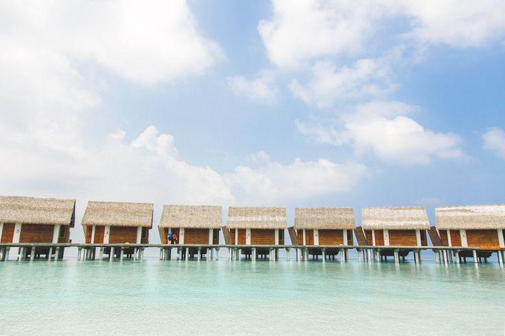 Honeymooning in the Maldives • WishWishWish