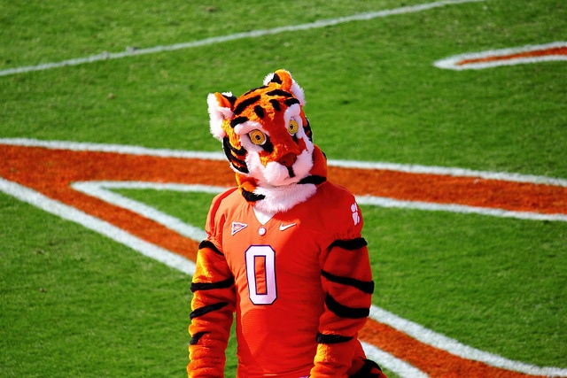 The Tiger, mascot for the Clemson Tigers, has been a fixture on the Death Valley sidelines since 1954.