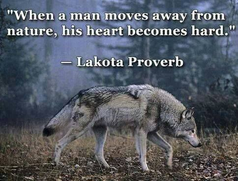 When a Man Moves Away From Nature, His Heart Becomes Hard--Lakota Proverb