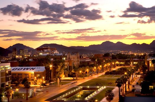 You know you go to the best school in the world! | Community Post: You Know You Went To University Of Arizona When...