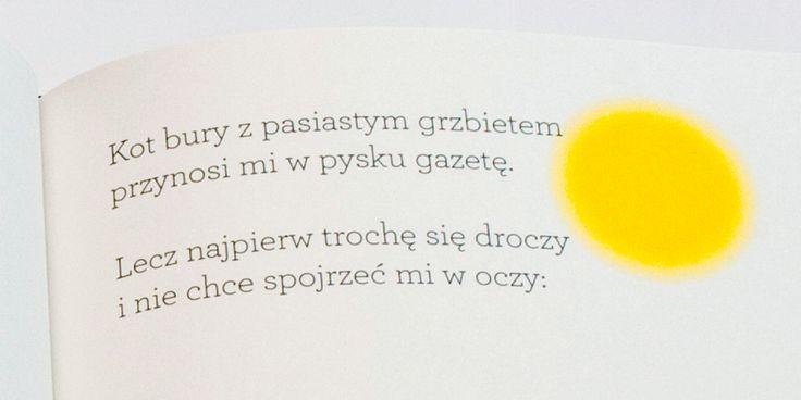 """Piotr Sommer, """"Fruwajka"""", Wydawnictwo Warstwy, Wrocław 2015"""