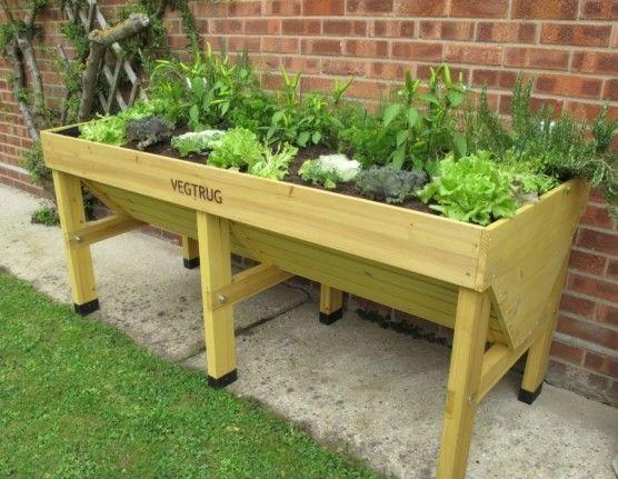 17 Best Images About Trug Garden Ideas On Pinterest