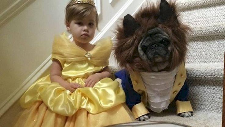 """Foto viral: Una nena y su perro son """"La Bella y la Bestia"""" para Halloween - Telefe Noticias"""