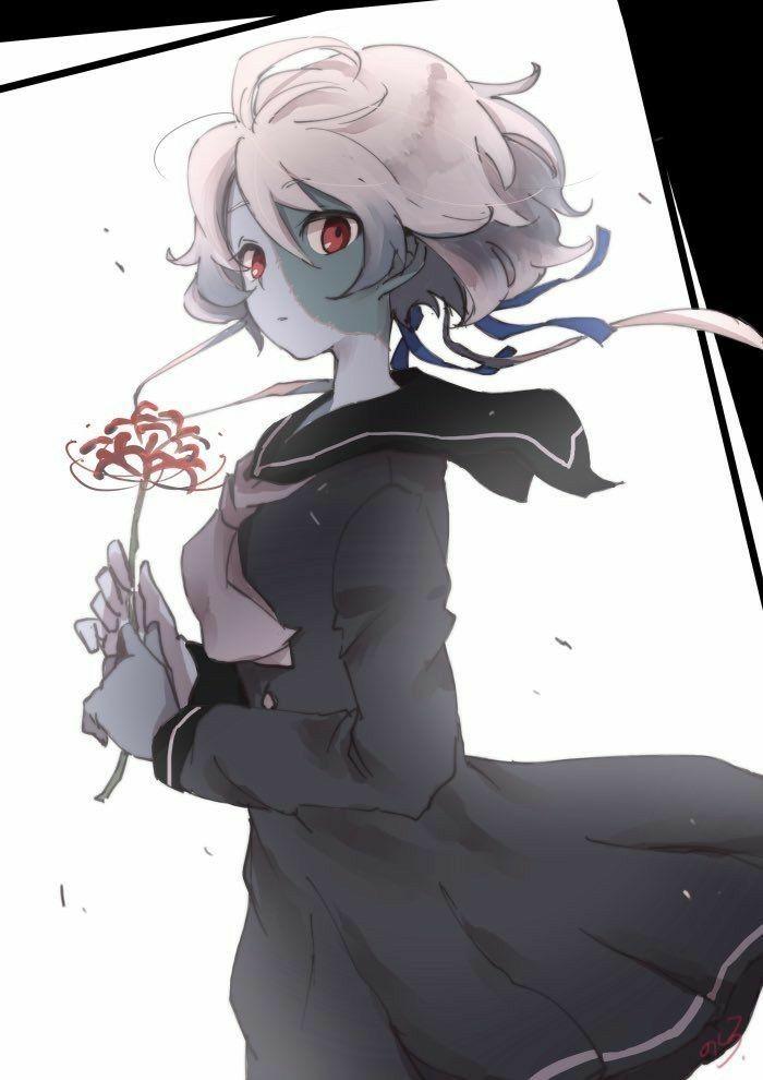 Pin De Akashisjg Em Zombieland Saga Anime Imagem De Anime Ilustracoes