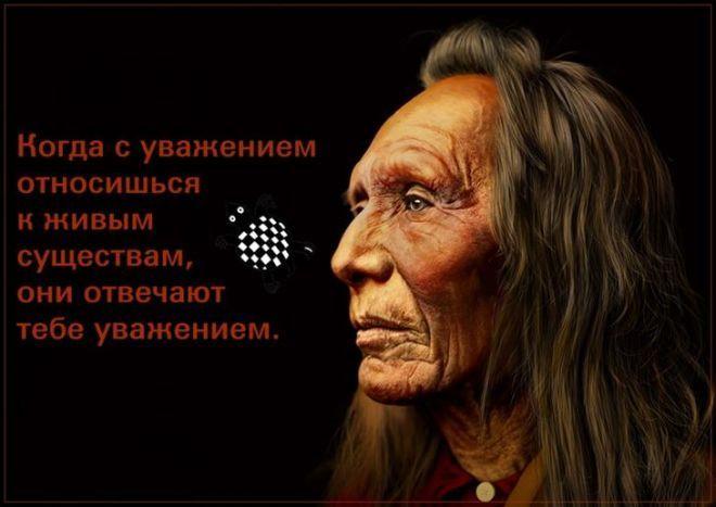 21 индейская пословица, способная перевернуть ваше мировоззрение